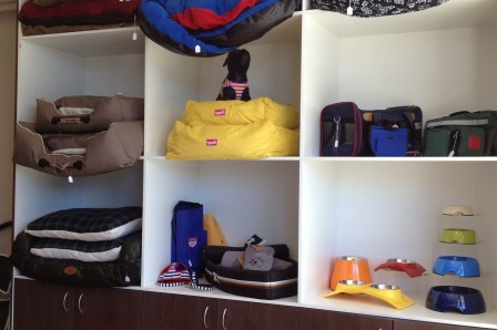 Dogs Empire's beddings and food bowls